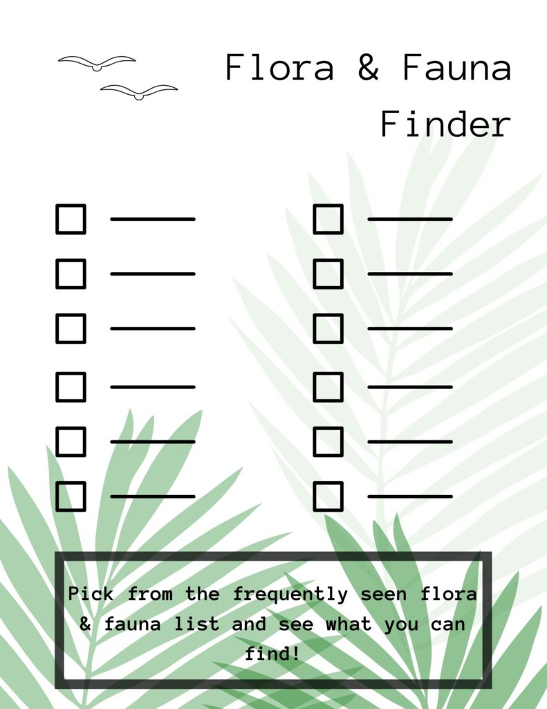 Flora and Fauna Finder (PDF) Opens in new window